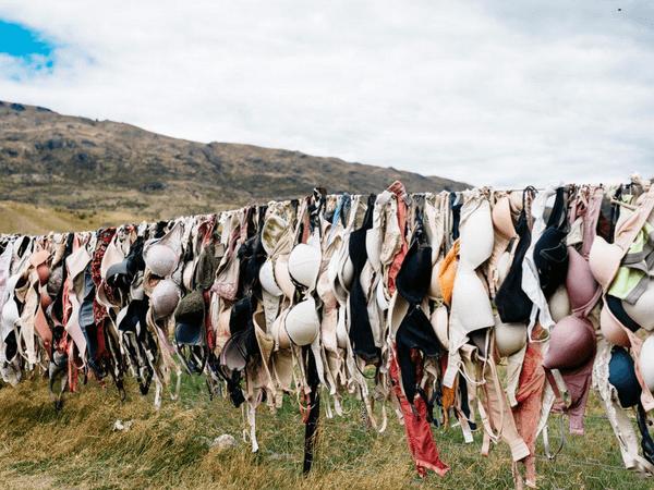 many-bras-hanging