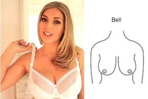 2-breast-shape-bell