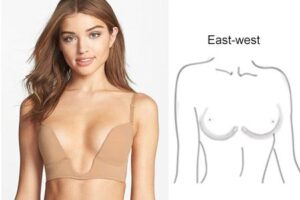 3-breast-shape-East-West